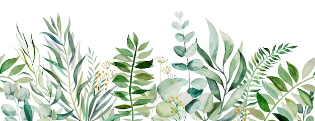 Watercolor botanical leaves seamless border illustration set isolated