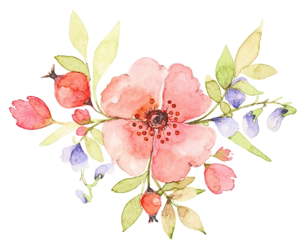 Watercolor bouquet of wildflowers. pink rose dog flower with berries. botanical spring composition