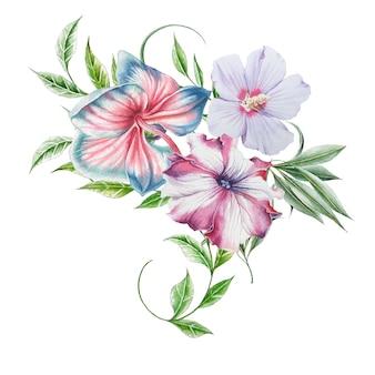 花と水彩の花束。蘭。ハイビスカス。ペチュニア。図。手で書いた。