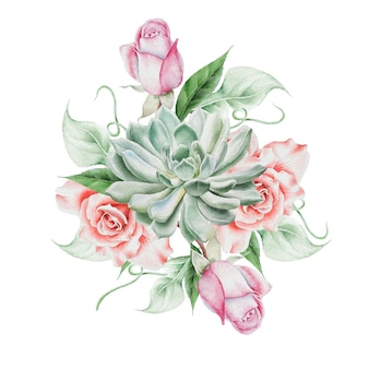 花と水彩の花束。ローズ。多肉植物。図。手で書いた。