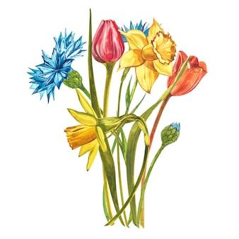 水仙、チューリップ、ダリアと水彩の花束