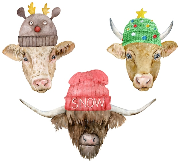 Watercolor bull head in knitted hats