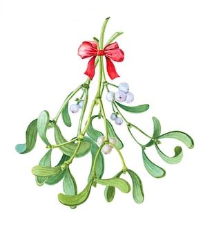 Акварель букет из омелы. рождественские традиции поцелуев. акварельные зимние иллюстрации