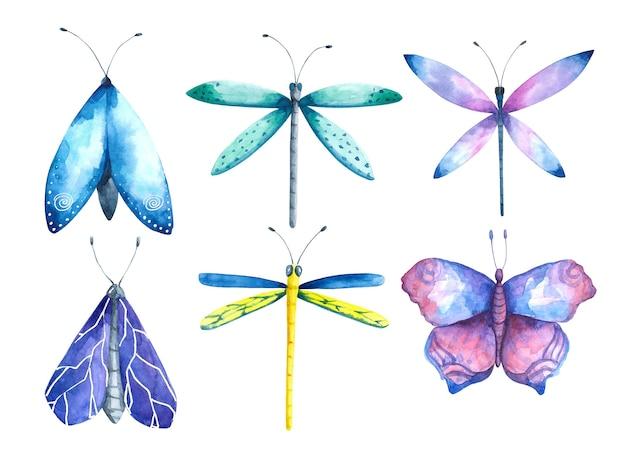 수채화 나비 세트 잠자리 나방 클립 아트 컬렉션