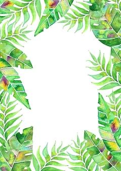 열대 잎이 있는 수채화 카드 배열