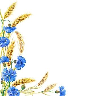 Cornflowers, 익은 밀의 귀와 수채화 카드. 파란 꽃의 아름 다운 밝은 꽃다발
