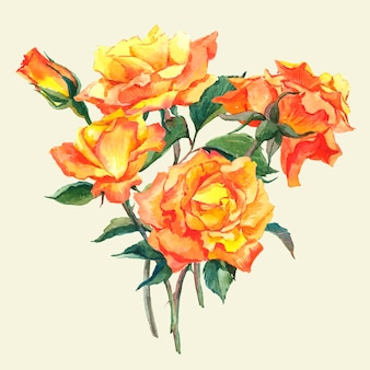 Watercolor card with yellow garden roses