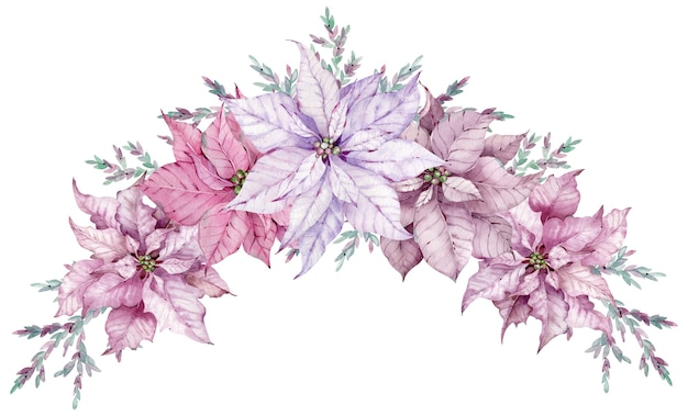 Watercolor christmas bouquet with pink and violet poinsettia flowers. winter border card isolated on the white background.