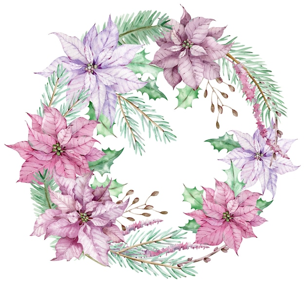 Watercolor christmas circle bouquet with pink and violet poinsettia flowers and pine branches. new year's winter card isolated on the white background.