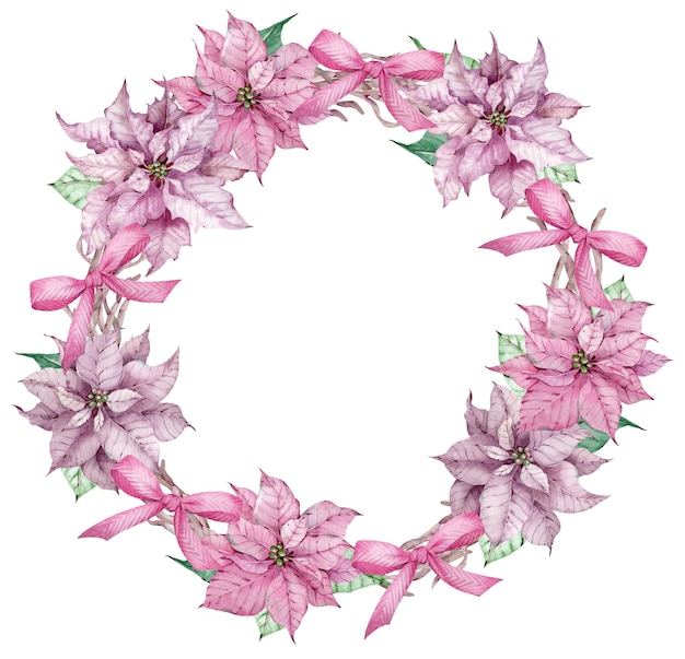 Watercolor christmas and happy new year pink poinsettia wreath. christmas decorative circle frame of flowers with bows isolated on the white background.