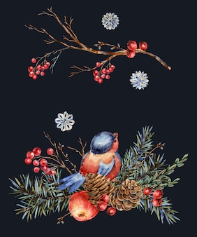 Watercolor christmas natural greeting card of fir branches, red apple, berries, pine cones, winter bird. vintage illustration