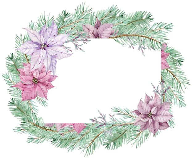 松の枝と水彩のクリスマスポインセチアフレーム。冬のフレーム。