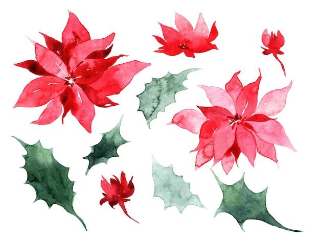 水彩のクリスマスツリー、ホリーとポインセチア