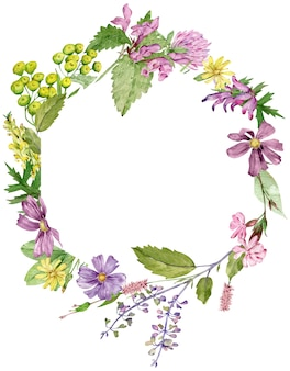 Watercolor circle frame with herbs and wildflowers isolated on white background with copy space
