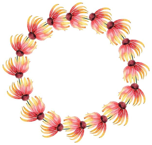 コピー スペースで白い背景に分離されたオレンジ色のエキナセアの花の水彩サークル フレーム