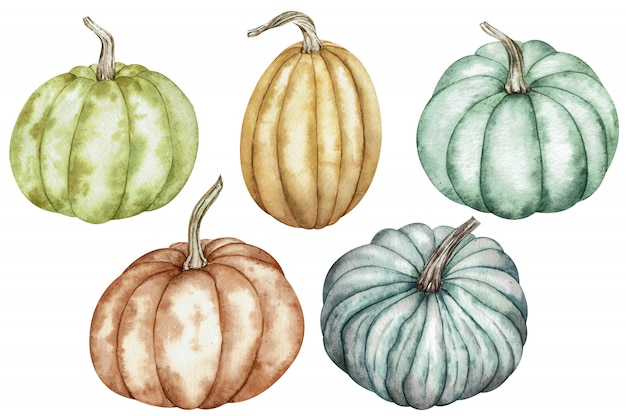Watercolor clipart of colorful pumpkins