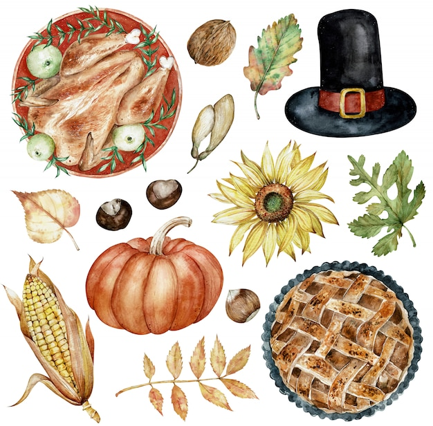 Watercolor clipart of thanksgiving day elements baked turkey, hat, nuts, sunflower, pumpkin, autumn leaves.