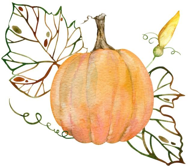 オレンジ色のカボチャ、花、シルエットの葉の水彩画の構成。感謝祭のカボチャ。白い背景で隔離の植物画。葉のシルエット。