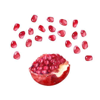 Watercolor compositions with pomegranates, pomegranate seeds and pomegranate juice