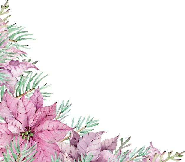 ポインセチアの花と松の枝の水彩画のコーナーフレーム。白い背景で隔離の新年の花カード。