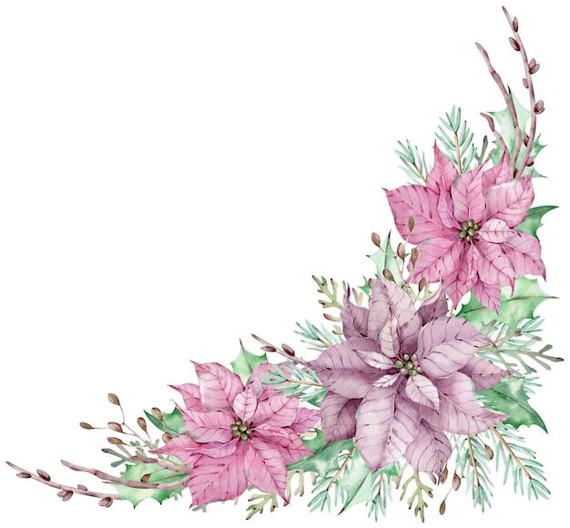 녹색 잎, 소나무 및 향나무 가지와 수채화 코너 핑크 포 인 세 티아 꽃다발. 겨울 꽃꽂이. 아름다운 분홍색과 보라색 꽃