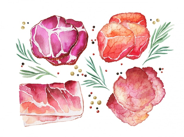 Watercolor cured meat with rosemary and spice