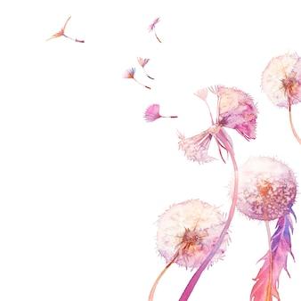 水彩のタンポポのイラスト。白い背景の上の打撃。手描きのカードデザイン。