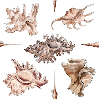 Watercolor digital illustration seamless pattern of seashells from brown marine life on background