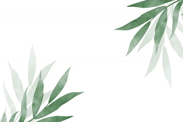 Watercolor drawing of branches with leaves on a white background.design template greeting card design.