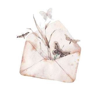 水彩封筒と蝶のイラスト。分離された紙の封筒と様々な空飛ぶ蝶の描かれたヴィンテージのアートワークを手します。ロマンチックな夏のアート