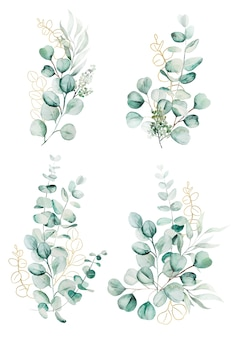 Watercolor eucaliptus branches and leaves bouquets illustration isolated