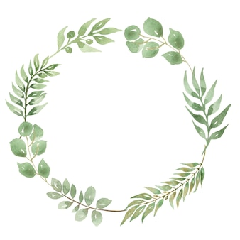 Watercolor eucalyptus frame leaves wreath isolated.