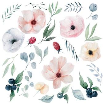 水彩花のコレクション
