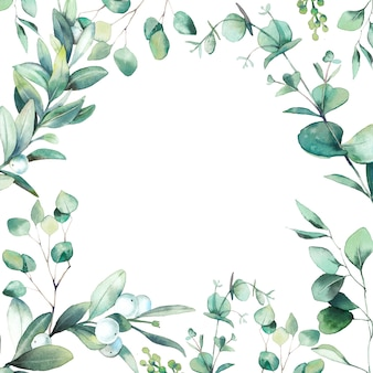 수채화 꽃 프레임입니다. 녹색 나뭇잎과 가지 흰색 배경에 고립 손으로 그린 인사말 카드 디자인. 유칼립투스, snowberry 식물 그림