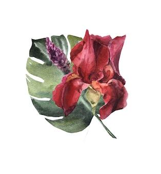 Акварельный букет цветов с ирисом и монстером