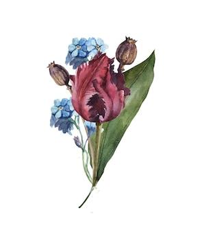 Акварельный букет цветов с листьями и тюльпаном