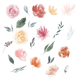 Акварельные цветочные элементы цветут иллюстрации листья и поздние завтраки