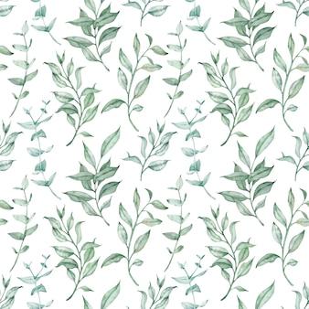 水彩の緑のハーブとユーカリのシームレスなパターン。ヴィンテージの花の背景。植物の葉と枝のイラスト。