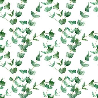 Акварель зеленый фон с ветвями эвкалипта. ботанический фон. узор зелени. нарисованные вручную листья.