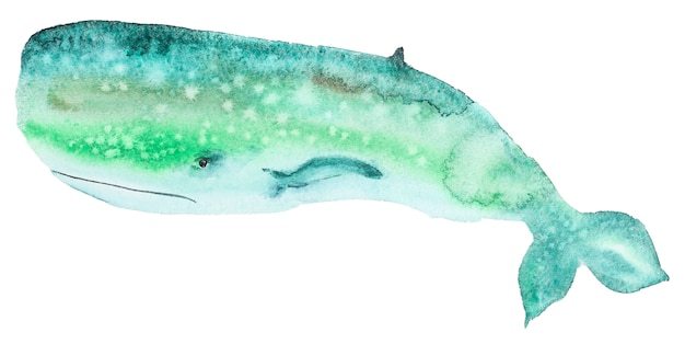 Watercolor green whale