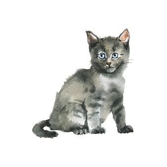 水彩の灰色のふわふわ子猫。手描きロシアンブルー猫。