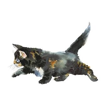 水彩の灰色の子猫。手は白い背景のふわふわ猫を描いた。絵画動物イラスト