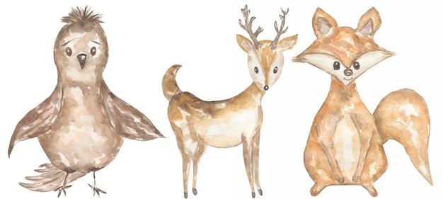 水彩手描きの動物の赤ちゃんのクリップアート。森の動物イラスト、森の鹿、小さなキツネ、スズメのクリップアート、キッズウォールアート、ベビーシャワー、バースデーパーティーカード