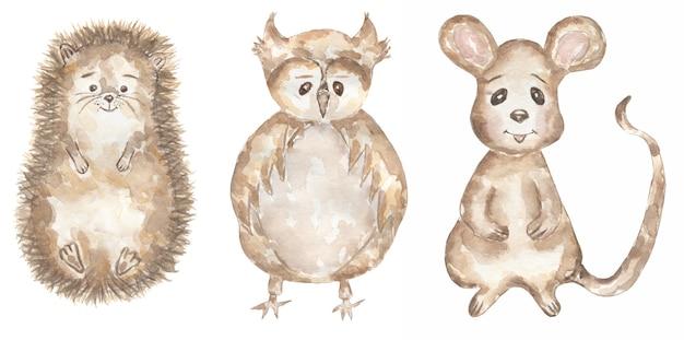 水彩手描きの動物の赤ちゃんのクリップアート。森の動物のイラスト、森のヘッジ、小さなマウス、フクロウのクリップアート、キッズウォールアート、ベビーシャワー、バースデーパーティーカード
