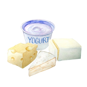 Watercolor hand drawn block of butter, yogurt and cheeses.