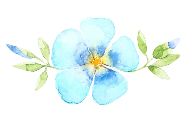 Watercolor hand drawn blue flower isolated on white background