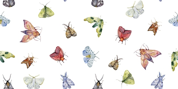 Watercolor hand drawn exotic butterflies and moths seamless pattern isolated on white background