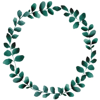 Watercolor hand drawn green floral wreath. botanical round frame with leaves on white background.