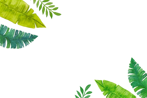 Watercolor, hand-drawn green tropical leaves frame on white background.