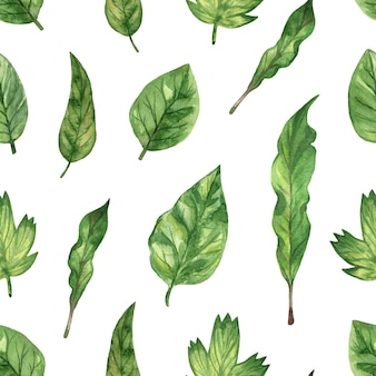 Watercolor hand drawn illustration. seamless pattern with green fresh leaf.